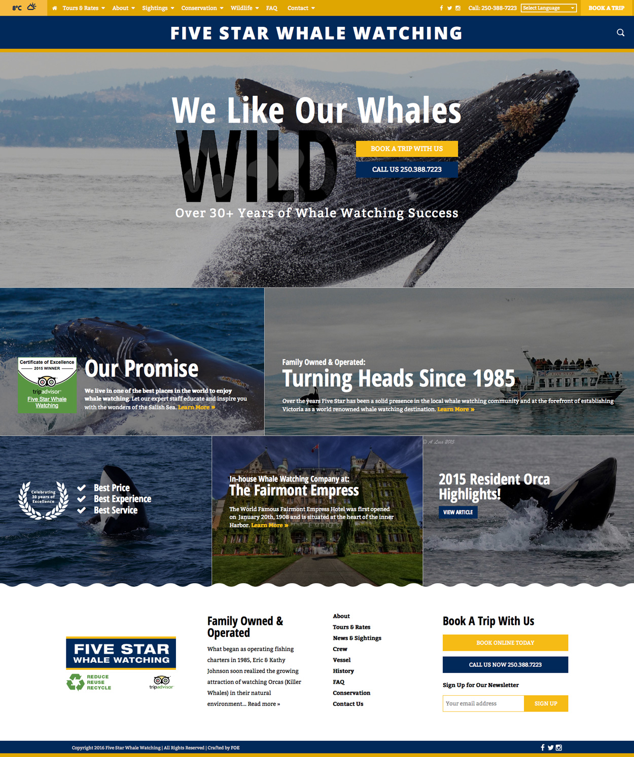 whale-watching-company-victoria-web-design